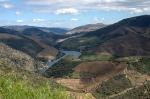 Porto - La valle dell'Alto Douro, dove sono i vigneti