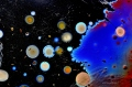 L'arte invisibile dei batteri