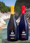 APEC sfondo fiume
