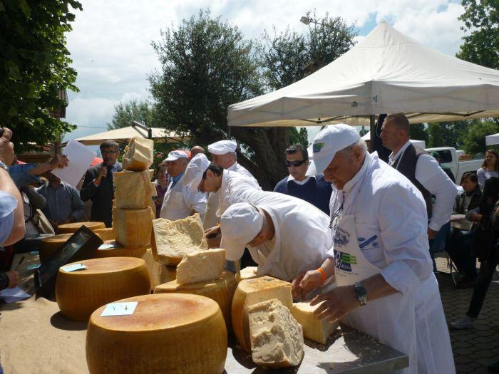 Gara di taglio della forma di Parmigiano Reggiano