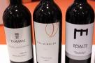 Degustazione vini della denominacion de origen Ribera del duero. Foto di Giorgio Dracopulos critico gastronomico